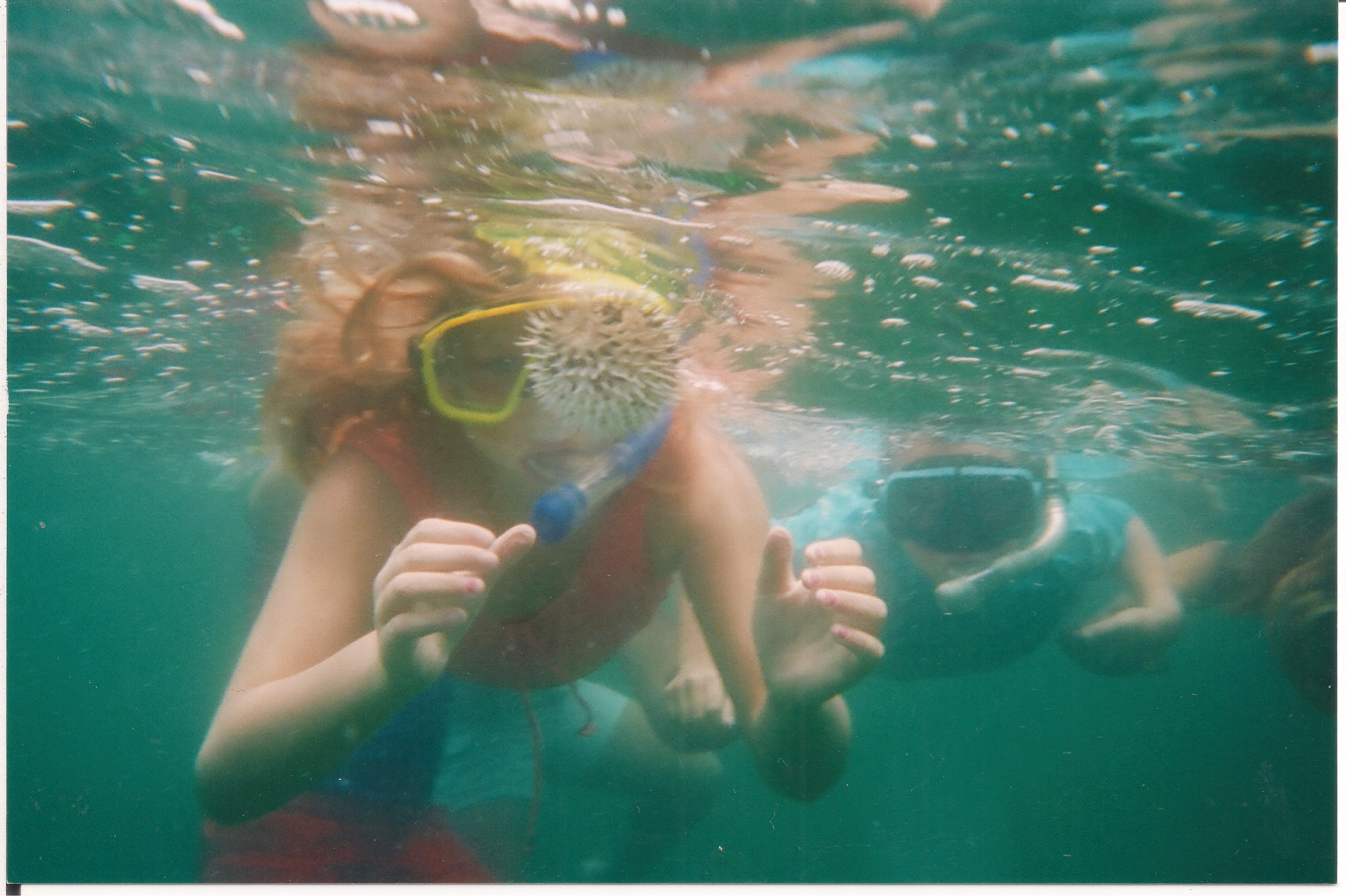 snorkeling_kids.jpg